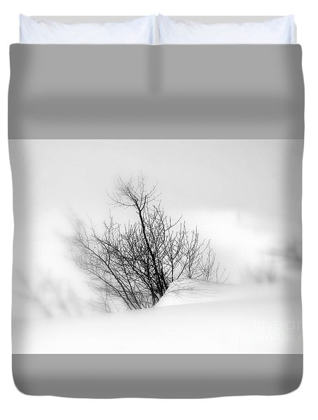 Duvet Cover featuring the photograph Essence Of Winter by Elfriede Fulda