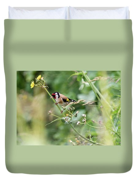 European Goldfinch Perched On Flower Stem B Duvet Cover