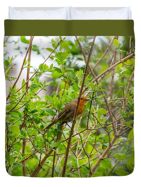 European Robin Duvet Cover