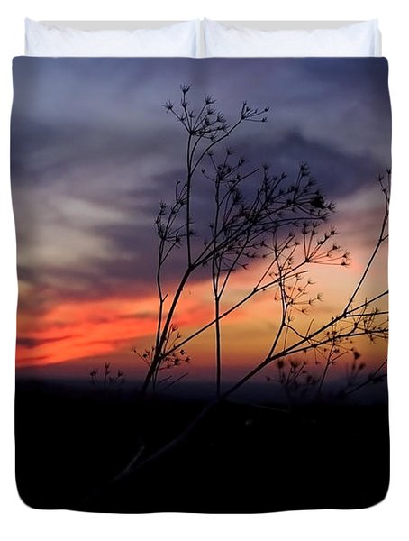 Evening Light Over Meadow Duvet Cover