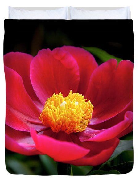 Duvet Cover featuring the photograph Evening Peony by Charles Harden