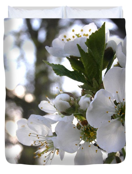 Duvet Cover featuring the photograph Evening Show - Cherry Blossoms by Angie Rea