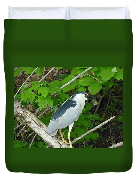 Evening Snack For A Night Heron Duvet Cover by Donald C Morgan