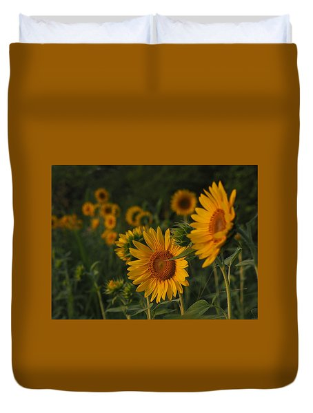 Evening Sunflowers Duvet Cover