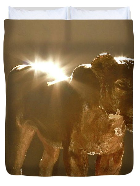 Evening's Light Duvet Cover by Laddie Halupa