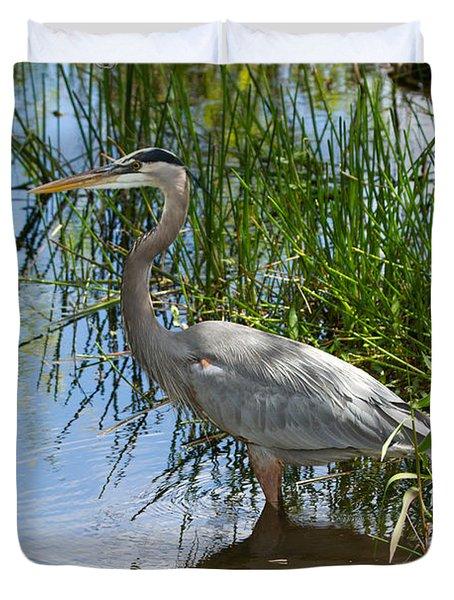 Everglades 572 Duvet Cover
