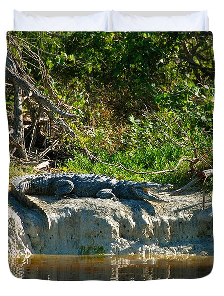 Everglades Crocodile Duvet Cover by David Lee Thompson
