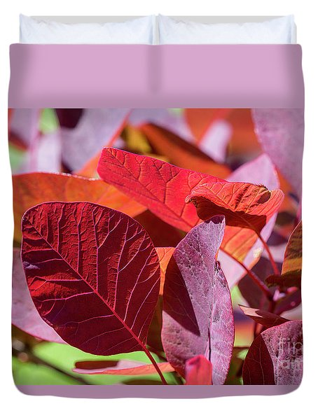 Duvet Cover featuring the photograph Everything Is Extraordinary by Linda Lees