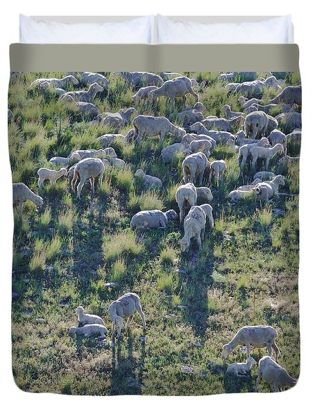 Ewes And Lambs - Original Duvet Cover by Kae Cheatham