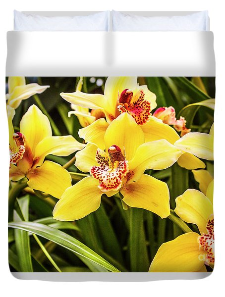 Exotic Orchids  Duvet Cover