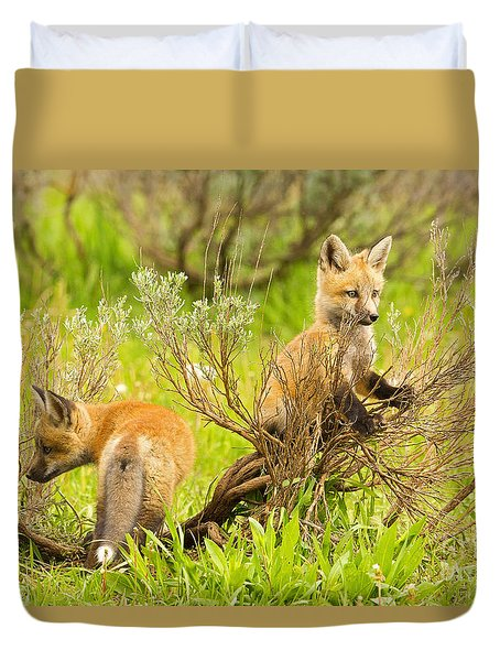 Explorers Duvet Cover