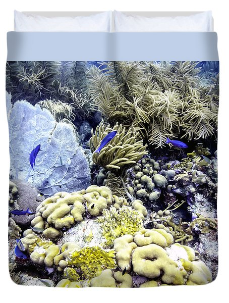 Duvet Cover featuring the photograph Explosion Of Life I by Perla Copernik