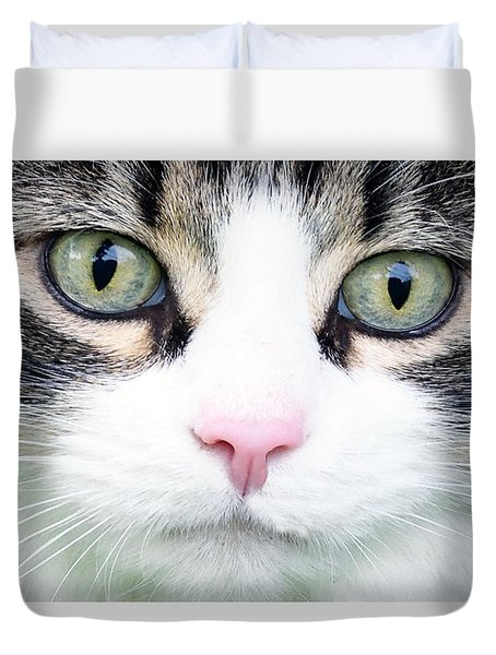 Duvet Cover featuring the painting Expressive Maine Coon D122016 by Mas Art Studio