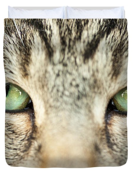 Extreme Close Up Tabby Cat Duvet Cover by Sharon Dominick