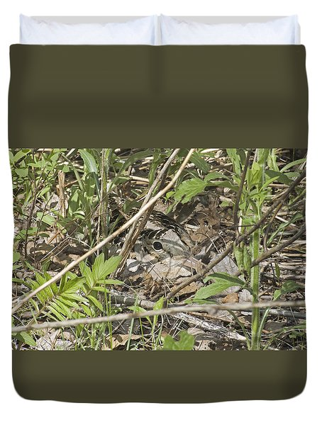 Eye-contact With The Nesting American Woodcock Duvet Cover