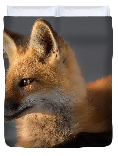 Duvet Cover featuring the photograph Eye Of The Fox by Bill Wakeley