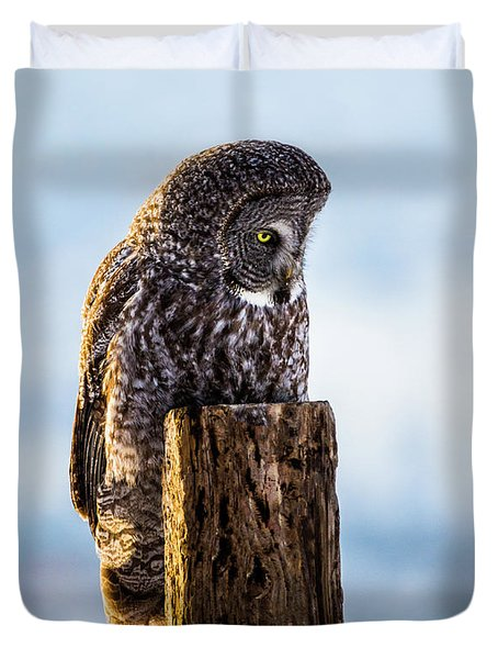 Eye On The Prize - Great Gray Owl Duvet Cover