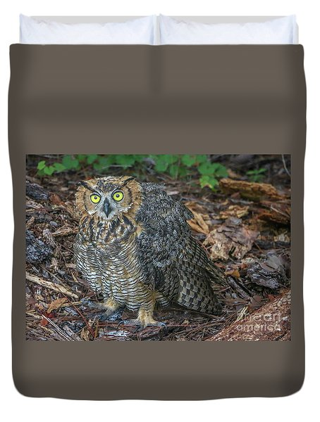 Duvet Cover featuring the photograph Eye To Eye With Owl by Tom Claud