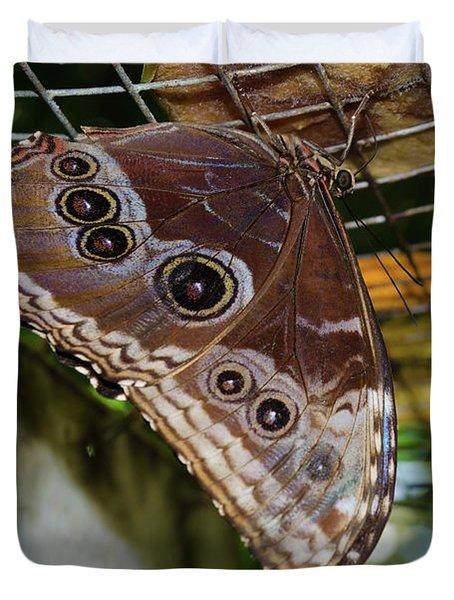 Eyed Butterfly Duvet Cover