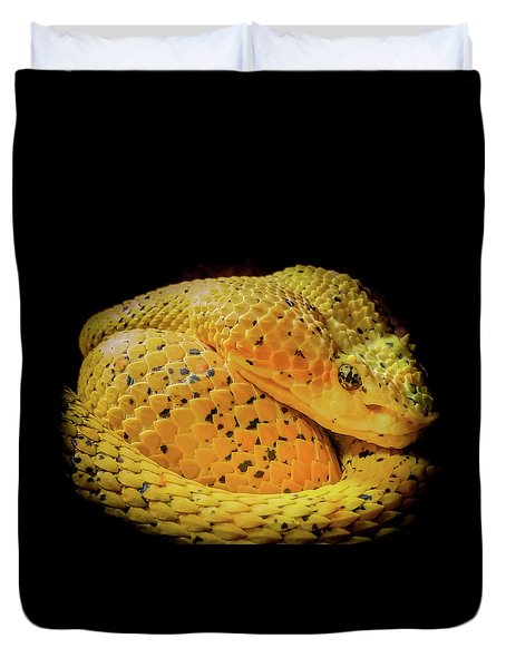 Duvet Cover featuring the photograph Eyelash Viper by Karen Wiles