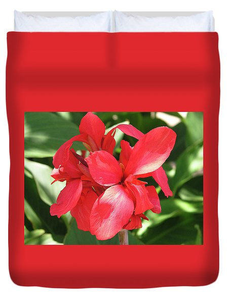 F22 Cannas Flower Duvet Cover by Donald k Hall