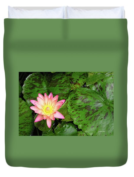 F6 Water Lily Duvet Cover by Donald k Hall