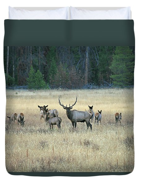 Faabullelk110 Duvet Cover
