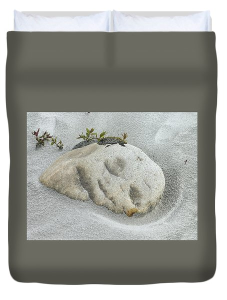 Face In The Sand At Baird Glacier Outwash Duvet Cover