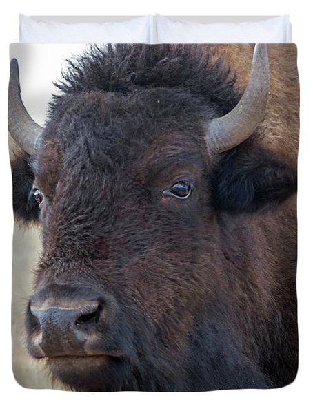 Duvet Cover featuring the photograph Face Of A Bison by Bill Gabbert