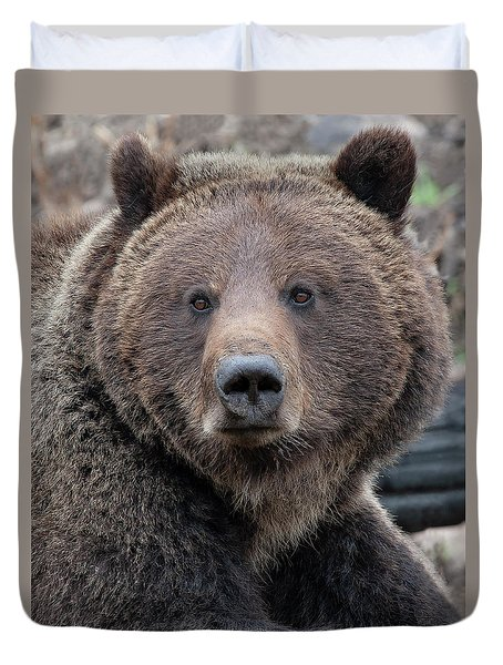 Face Of The Grizzly Duvet Cover