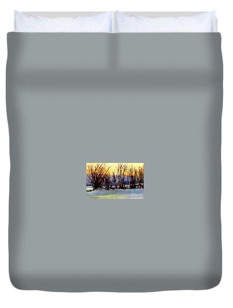 Facing Westward Duvet Cover by Joseph Barani