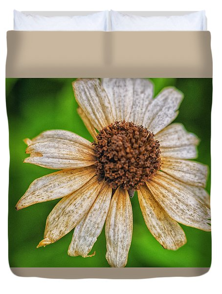 Faded Cone Flower Duvet Cover by Tom Singleton