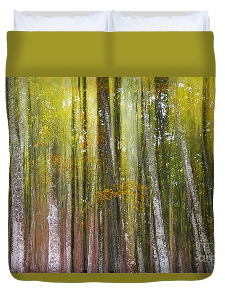 Fairy Forest I Duvet Cover by Yuri Santin