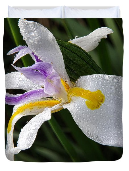 Duvet Cover featuring the photograph Fairy Iris 2 by Richard Rizzo