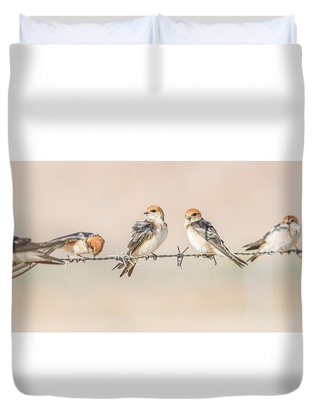 Fairy Martins Duvet Cover