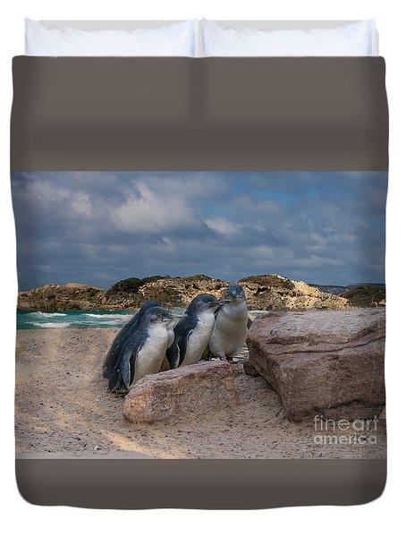 Duvet Cover featuring the photograph Fairy Penguins by Elaine Teague
