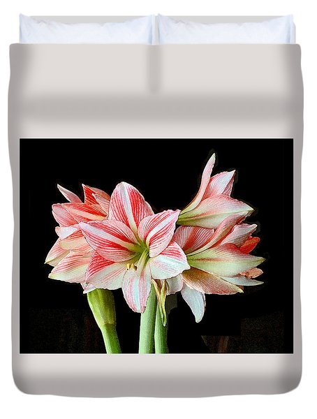 Fairyland Amaryllis  Duvet Cover