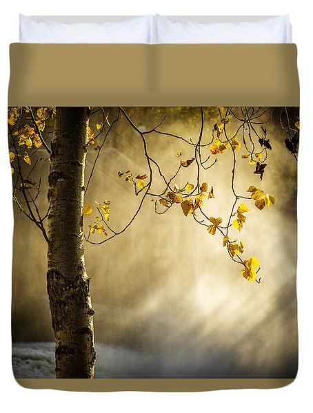 Fall And Fog Duvet Cover by Celso Bressan