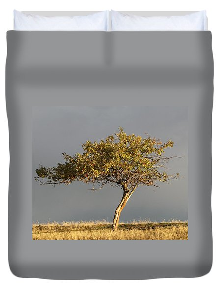 Fall At The Crabapple Tree Duvet Cover