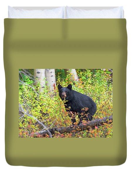 Fall Bear Duvet Cover by Scott Warner