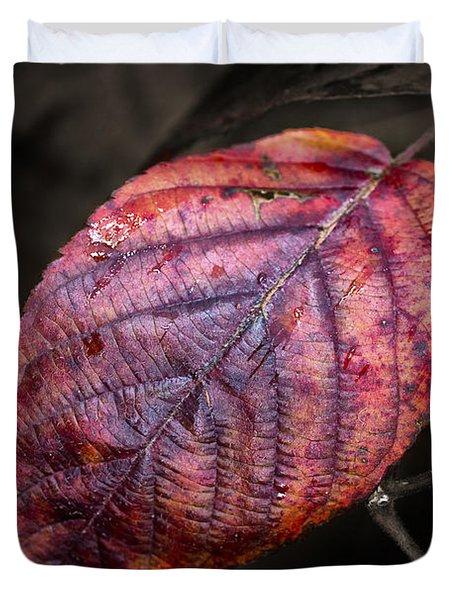 Fall Beech Leaf Duvet Cover