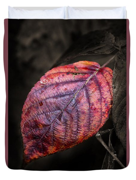 Fall Beech Leaf Duvet Cover