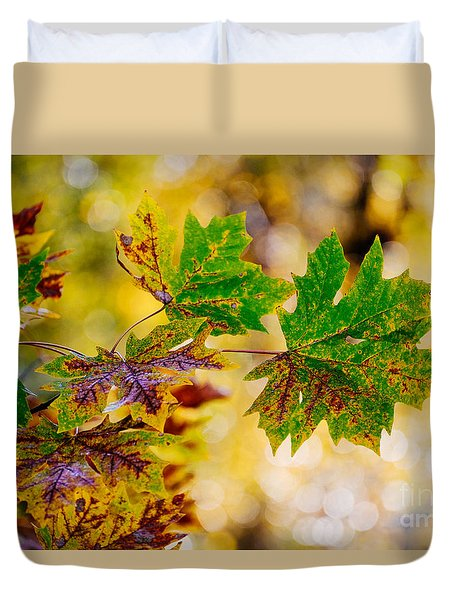 Duvet Cover featuring the photograph Fall Changes Everything by MaryJane Armstrong