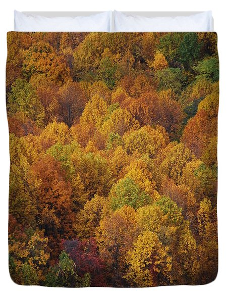 Duvet Cover featuring the photograph Fall Cluster by Eric Liller