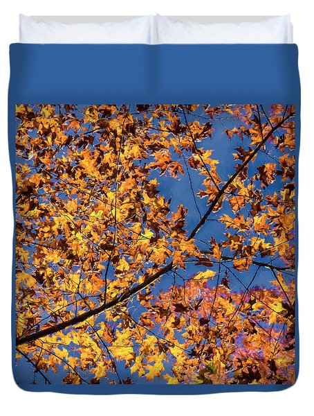 Fall Color - Bright Leaves And Blue Sky Duvet Cover