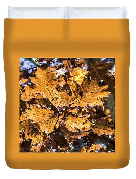 Fall Color - Crisp Autumn Days Duvet Cover