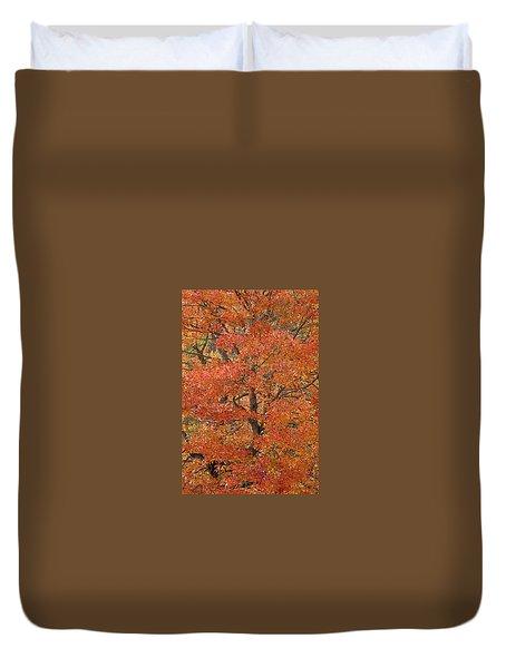Fall Color Duvet Cover