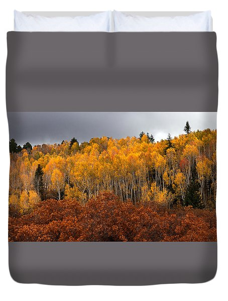 Fall Color On The Manti La Sal Mountains Duvet Cover