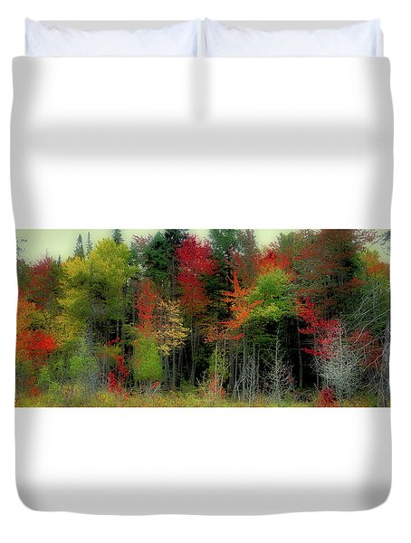 Duvet Cover featuring the photograph Fall Color Panorama by David Patterson