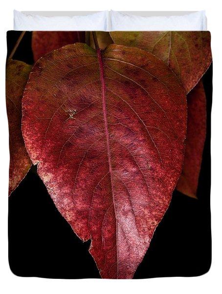 Fall Colors 3 Duvet Cover